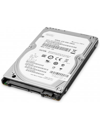 "HP W0R10AA sisäinen kiintolevy 3.5"" 1000 GB SATA Hp W0R10AA - 1"