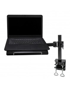 Newstar notebook desk mount Newstar NOTEBOOK-D100 - 1