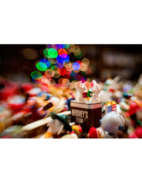 Lensbaby Composer Pro II with Sweet 35 Optic SLR Musta, Hopea Lensbaby LBCP235F - 4