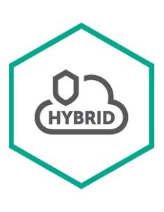 Kaspersky Lab Hybrid Cloud Security for Server Uusiminen Kaspersky KL4255XADTR - 1