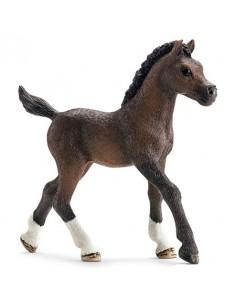 Schleich Farm Life Arabian foal Schleich 13762 - 1