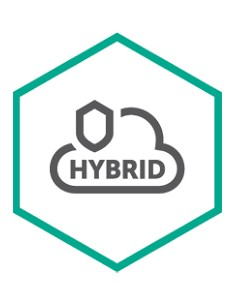 Kaspersky Lab Hybrid Cloud Security Uusiminen Kaspersky KL4255XABFJ - 1