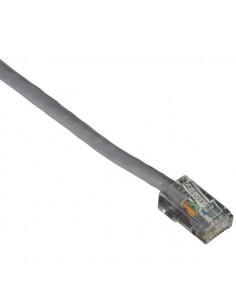 Black Box GigaTrue Cat6 UTP 30.4m verkkokaapeli 30.4 m U/UTP (UTP) Harmaa Black Box EVNSL620-0100 - 1