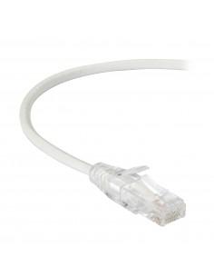 Black Box CAT6 1.5m verkkokaapeli 1.5 m U/UTP (UTP) Valkoinen Black Box C6PC28-WH-05 - 1