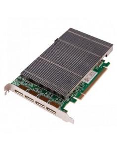 Black Box Blackbox Radian Video Graphics Card - 4-port D Black Box VGC-DP-4 - 1