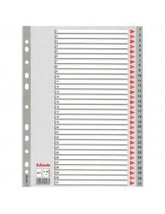 Esselte Plastic indexes Esselte 100108 - 1