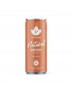 Natural Energy Drink - Persikka 330ml pullo Puhdistamo NEDPE330 - 1