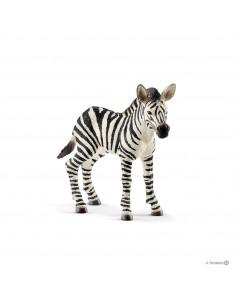 Schleich Wild Life Zebra foal Schleich 14811 - 1