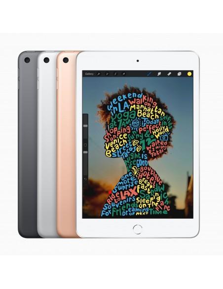 apple-ipad-mini-4g-lte-64-gb-20-1-cm-7-9-wi-fi-5-802-11ac-ios-12-silver-4.jpg