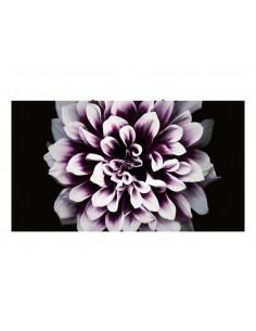 samsung-lh008iwjmws-signage-display-digital-flat-panel-led-4k-ultra-hd-black-silver-1.jpg