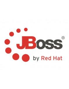 Red Hat JBoss Data Virtualization Red Hat MW00143 - 1